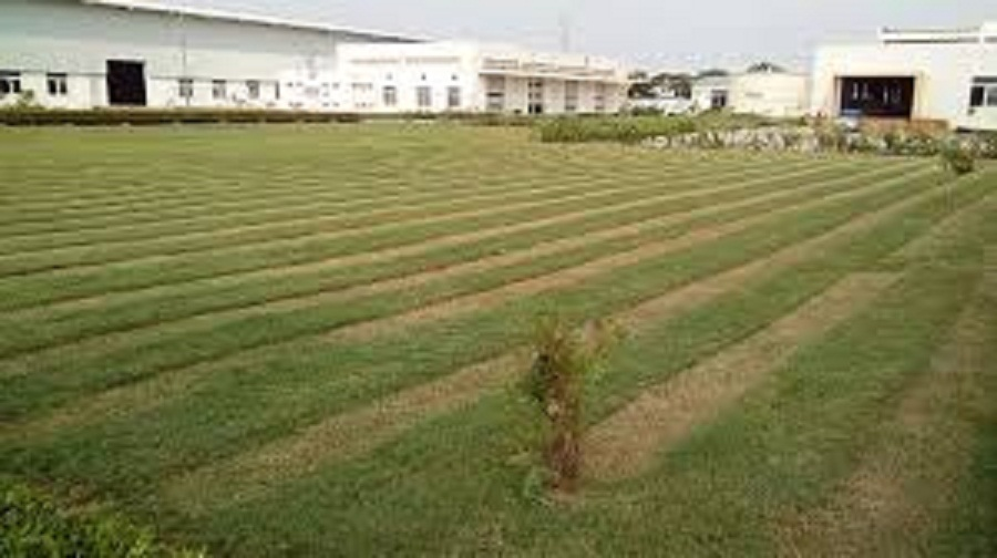600 ACRE INDUSTRIAL LAND FOR SALE IN MUNDRA , KUTCH – 9825249510